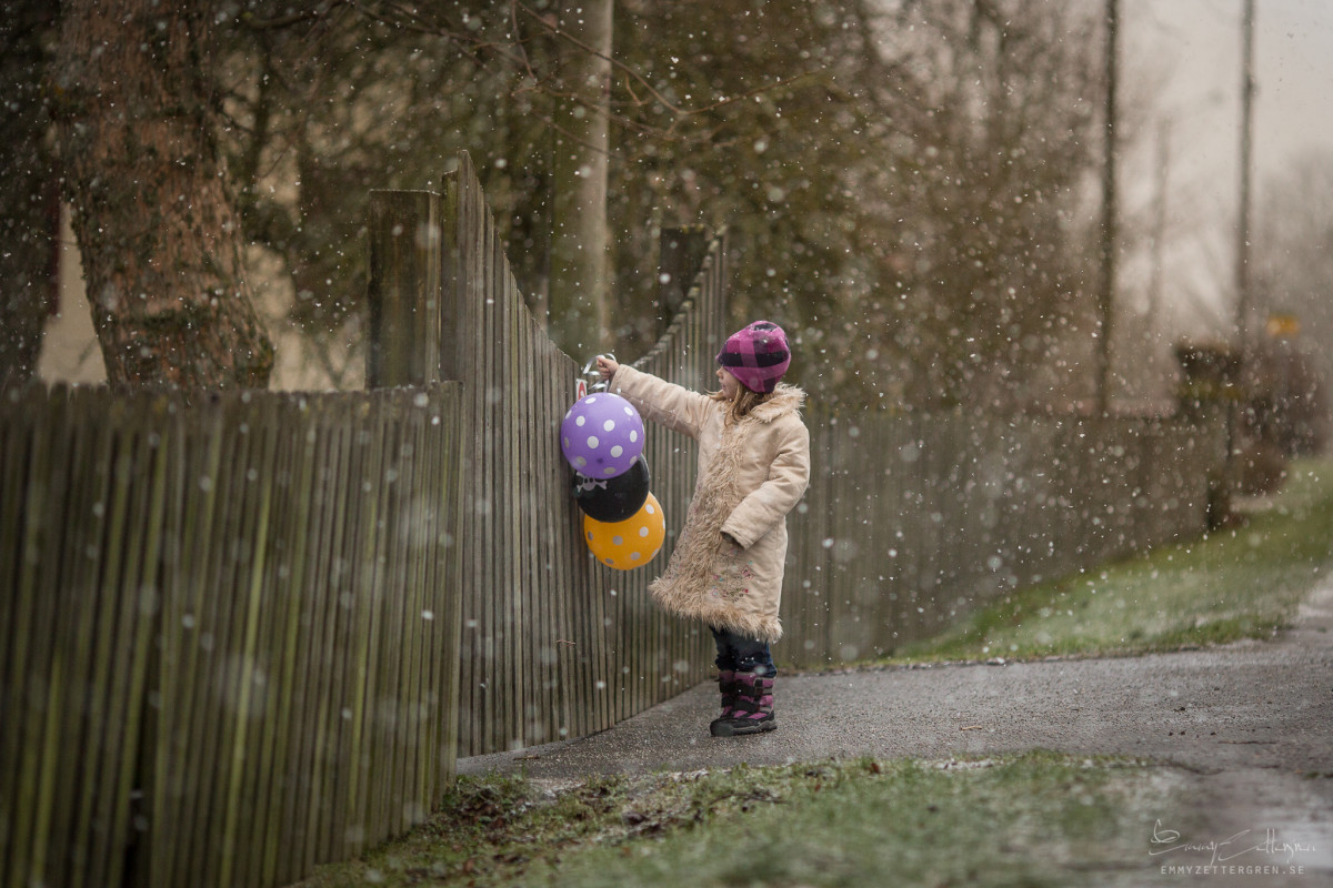 Pic 2 - winter