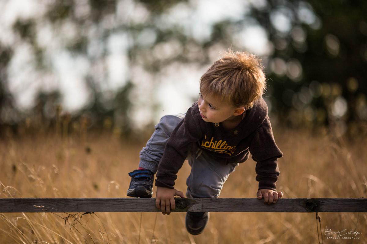Boy Climbing by Emmy Zettergren
