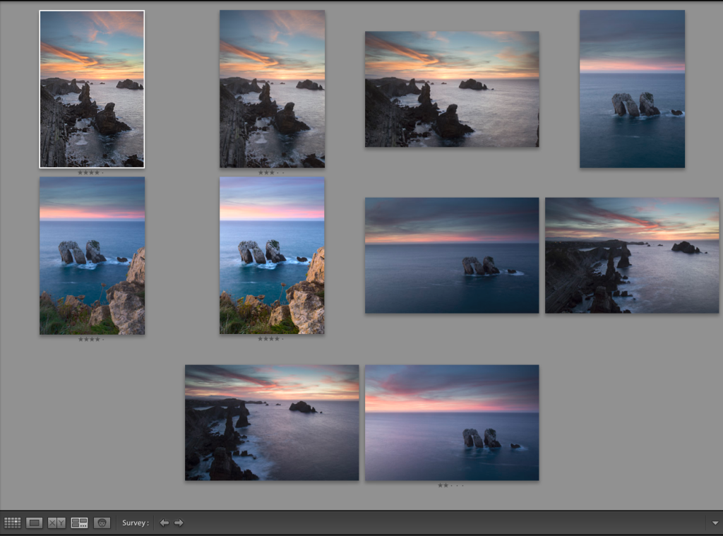 Adobe Lightroom Survey View