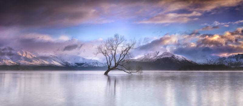 _DSC9228 Panorama - Timothy Poulton