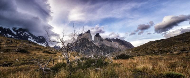 Through the Valley - Timothy Poulton