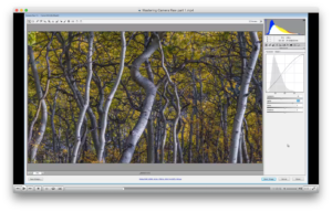 Mastering Adobe Camera Raw
