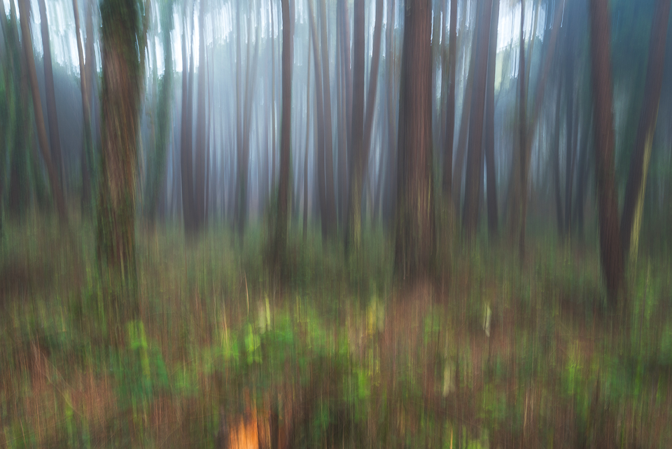 Creative Exercise With a Slow Shutter Speed
