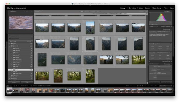 Keywording in Lightroom