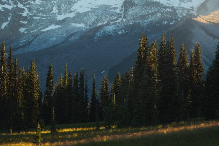 Handheld Landscape Photography