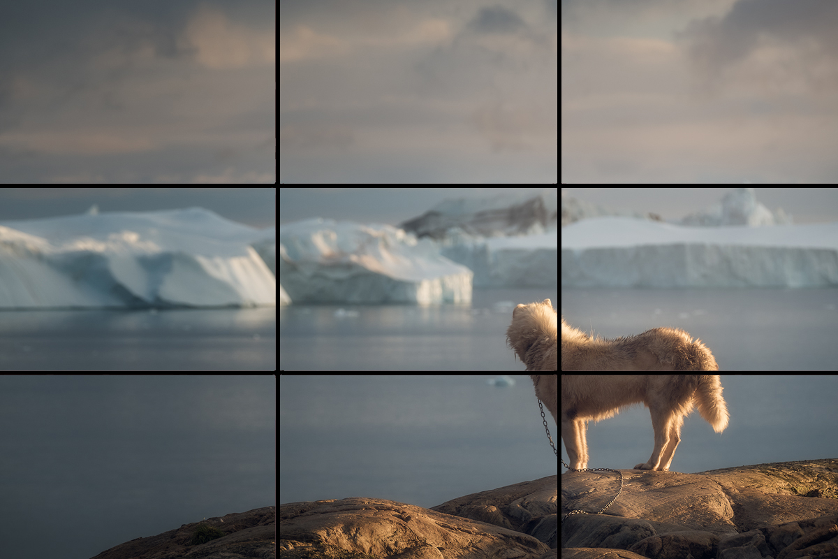 The Rule of Thirds Explained