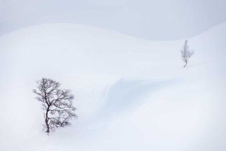 Photographer of the Month Arild Heitmann