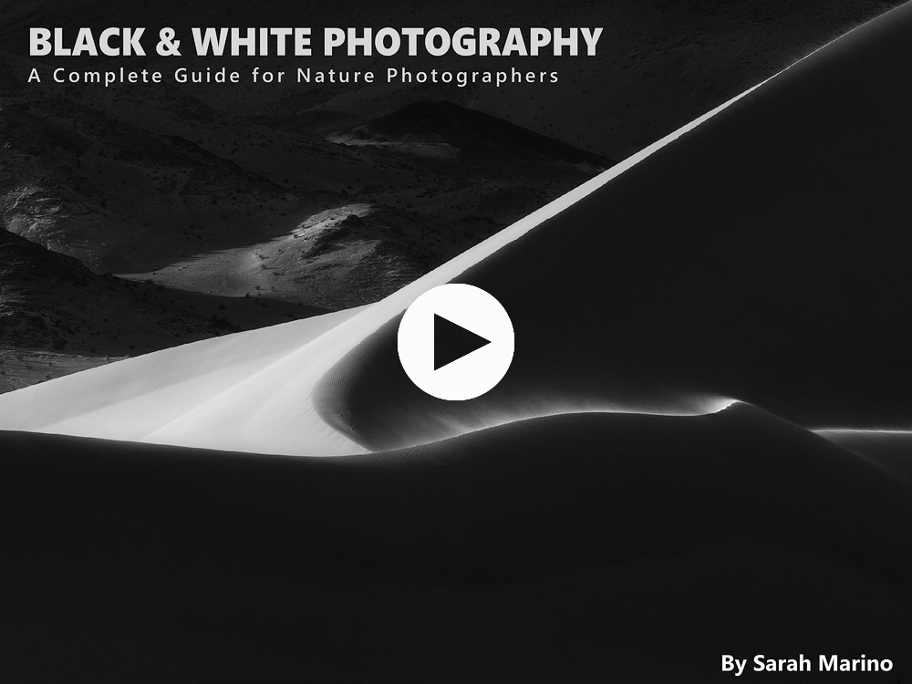 Black white photography a complete guide for nature photographers