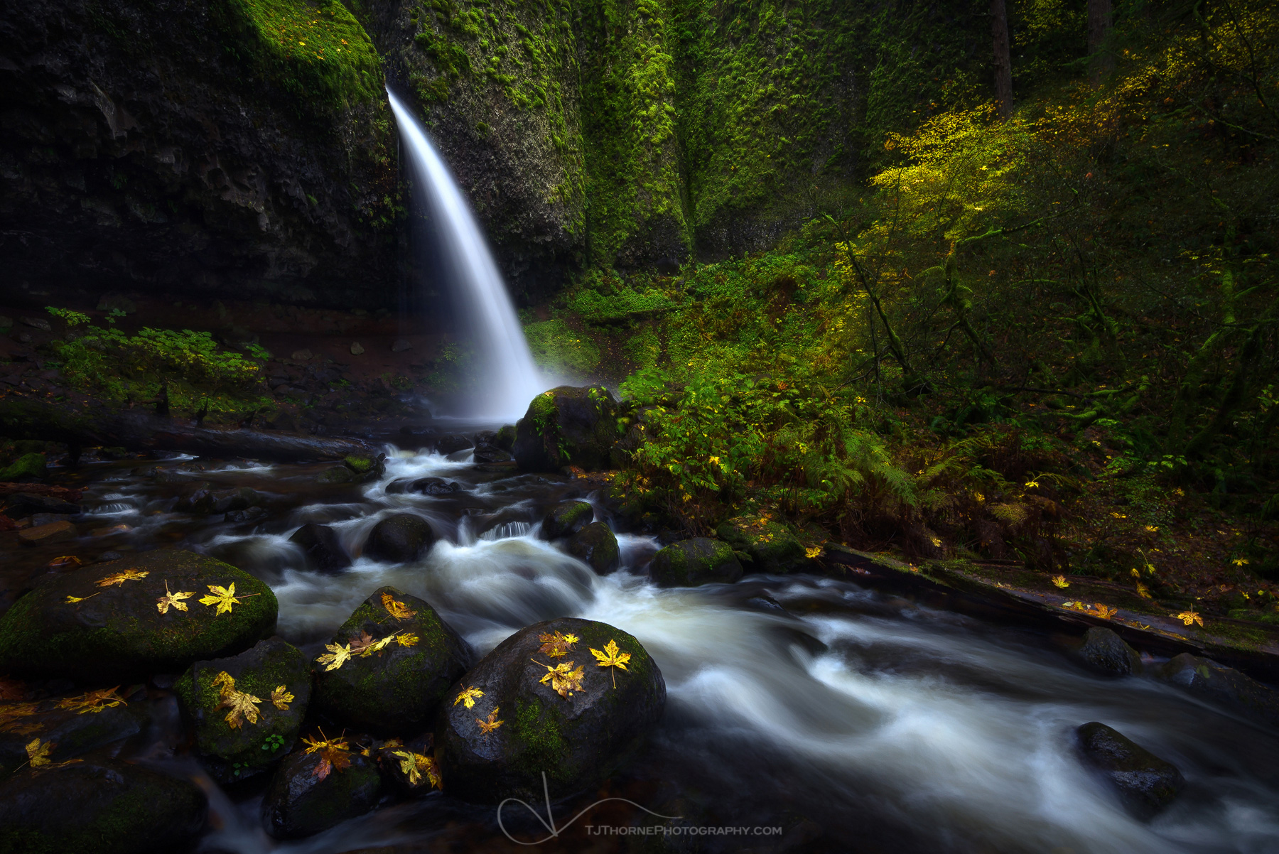 Interview with American Landscape Photographer TJ Thorne