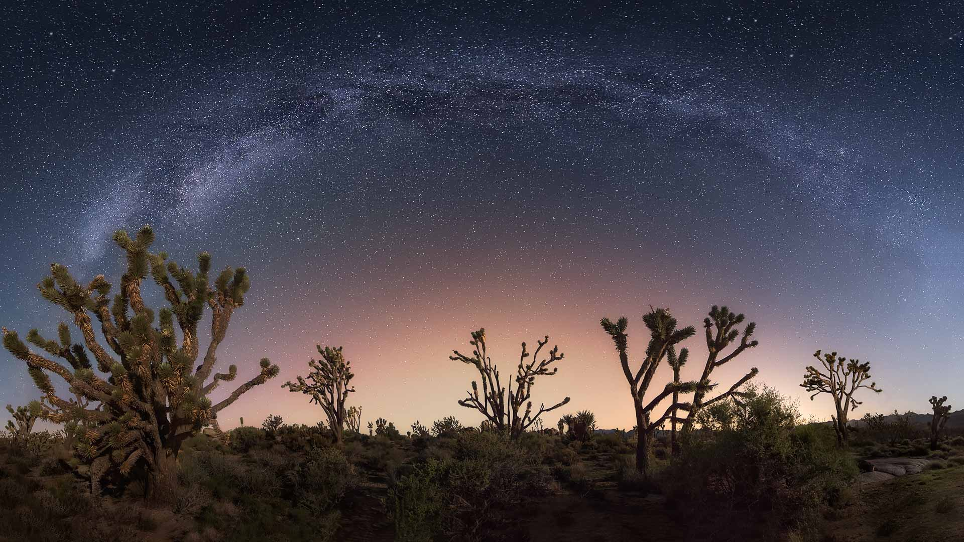 Best Tips for Planning Milky Way Photography