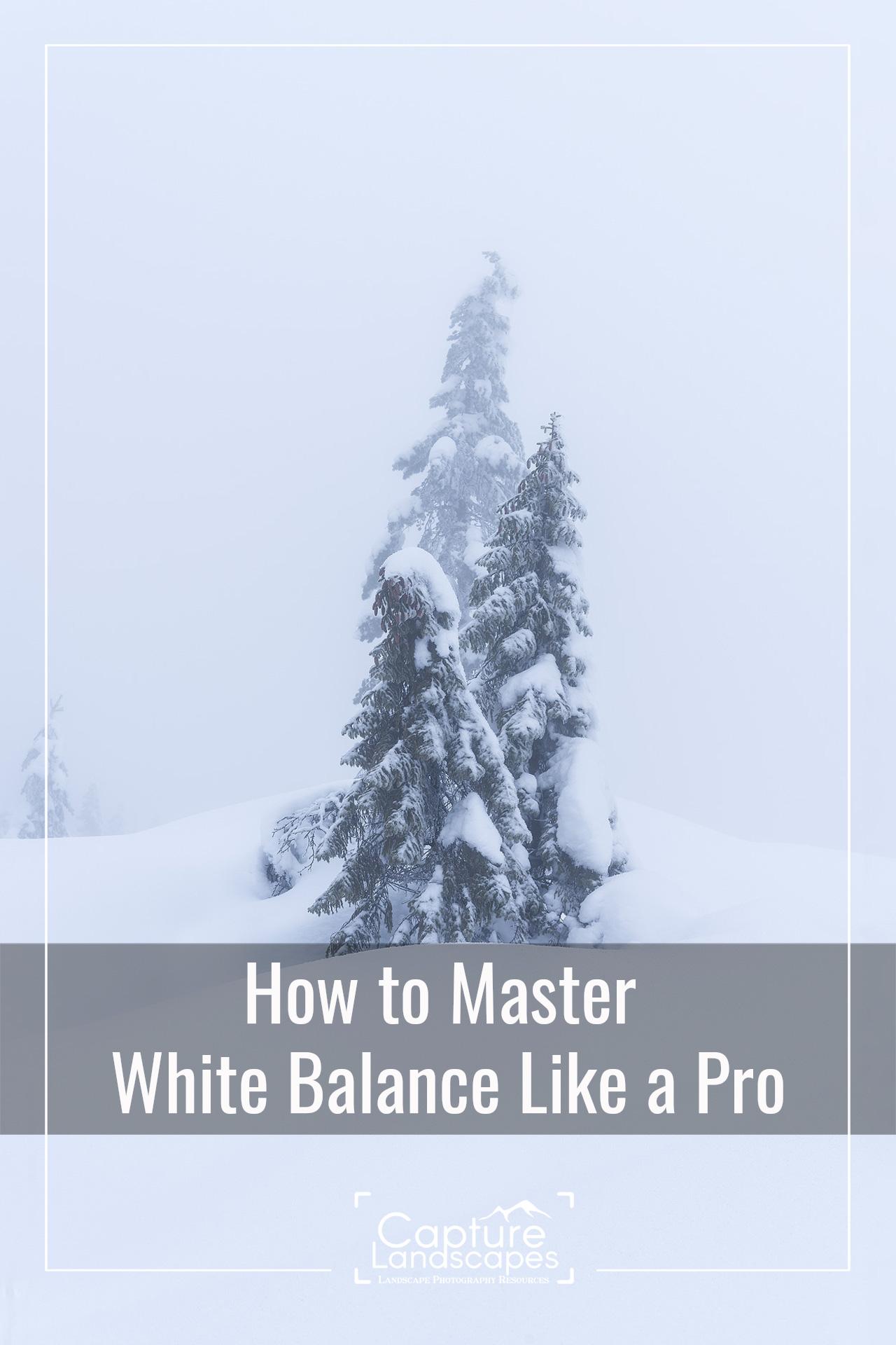 Master White Balance like a Pro