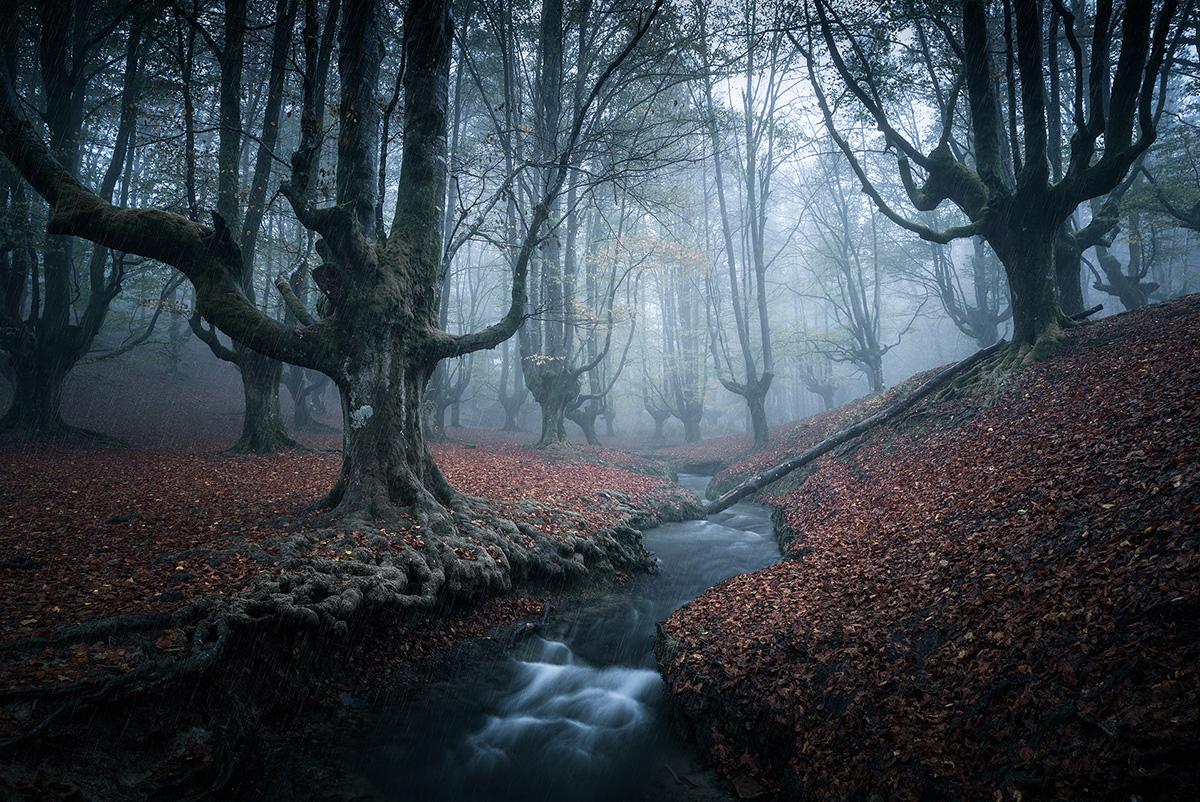 Fundamentals of Landscape Photography