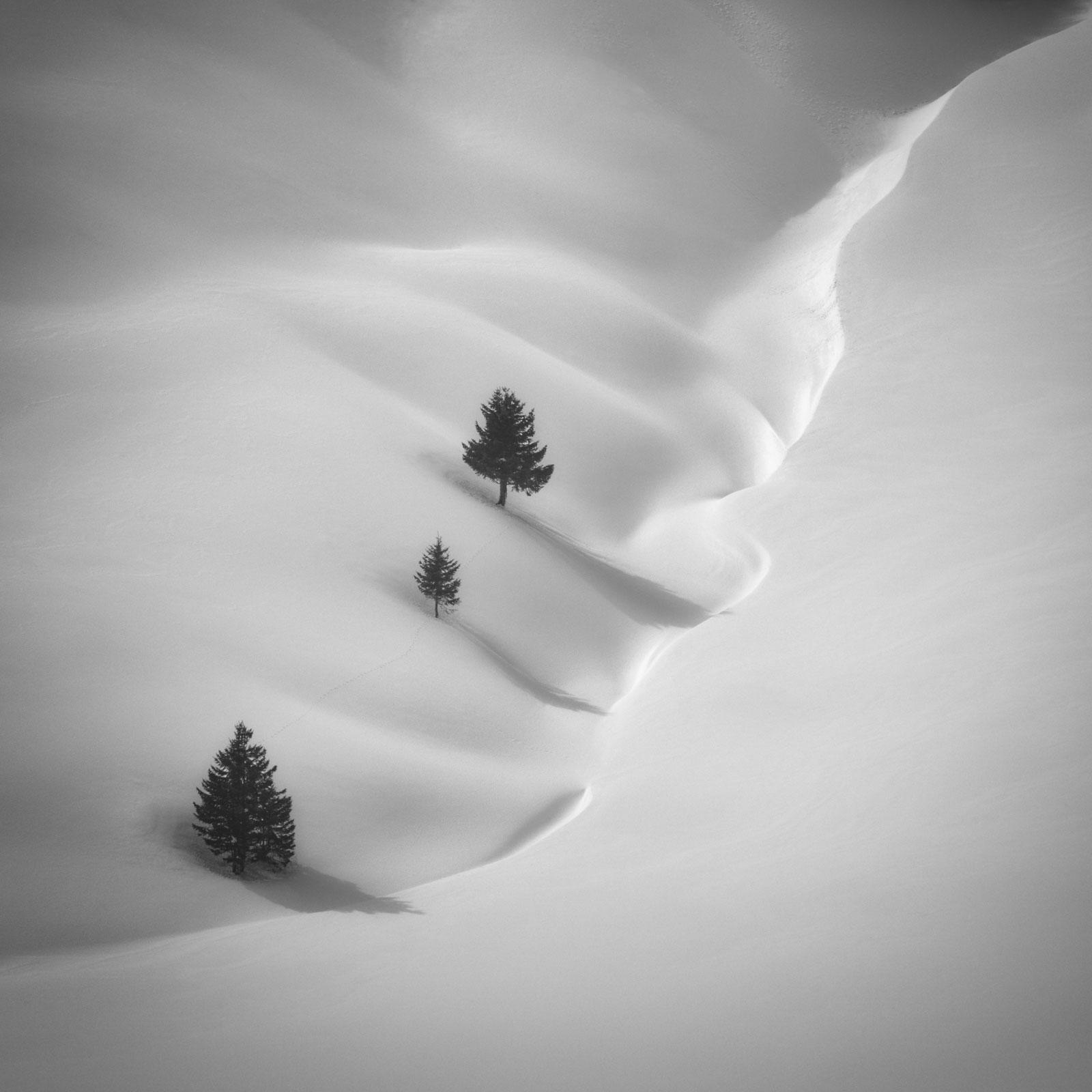 Rene Algesheimer Photography